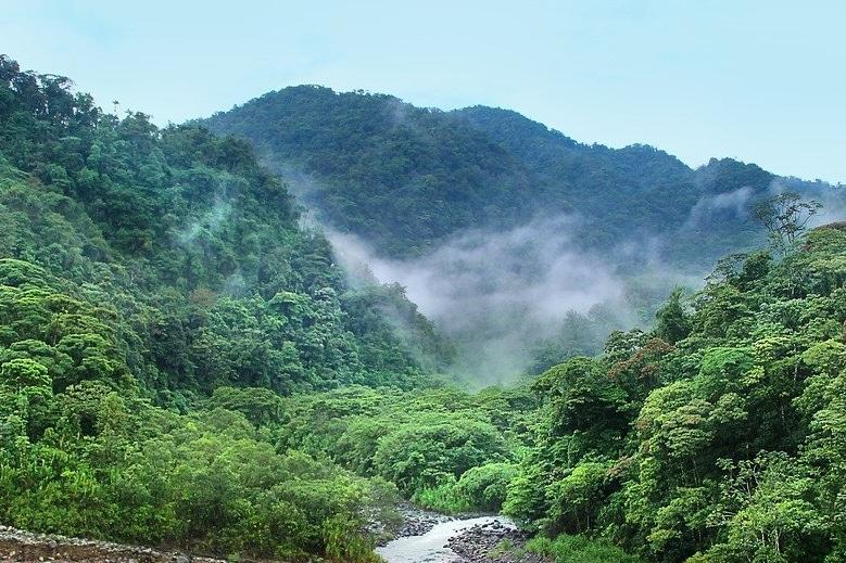 Costa Rica jungla y naturaleza