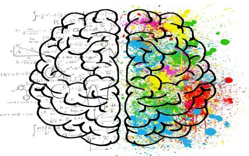 Neurofinanzas la clave para hacer dinero